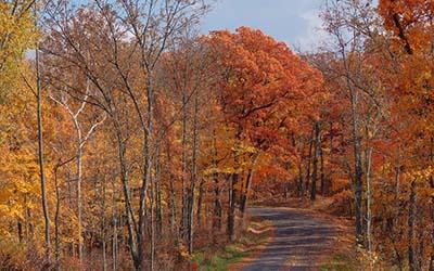 400x250 Augusta MO in fall
